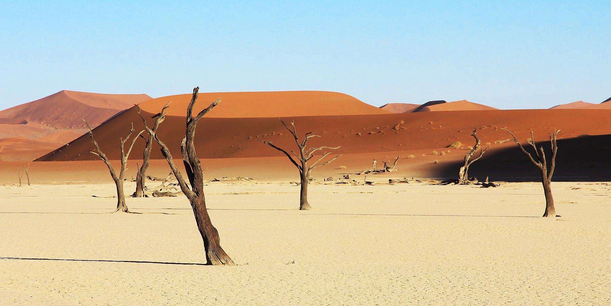 Namibia 4x4